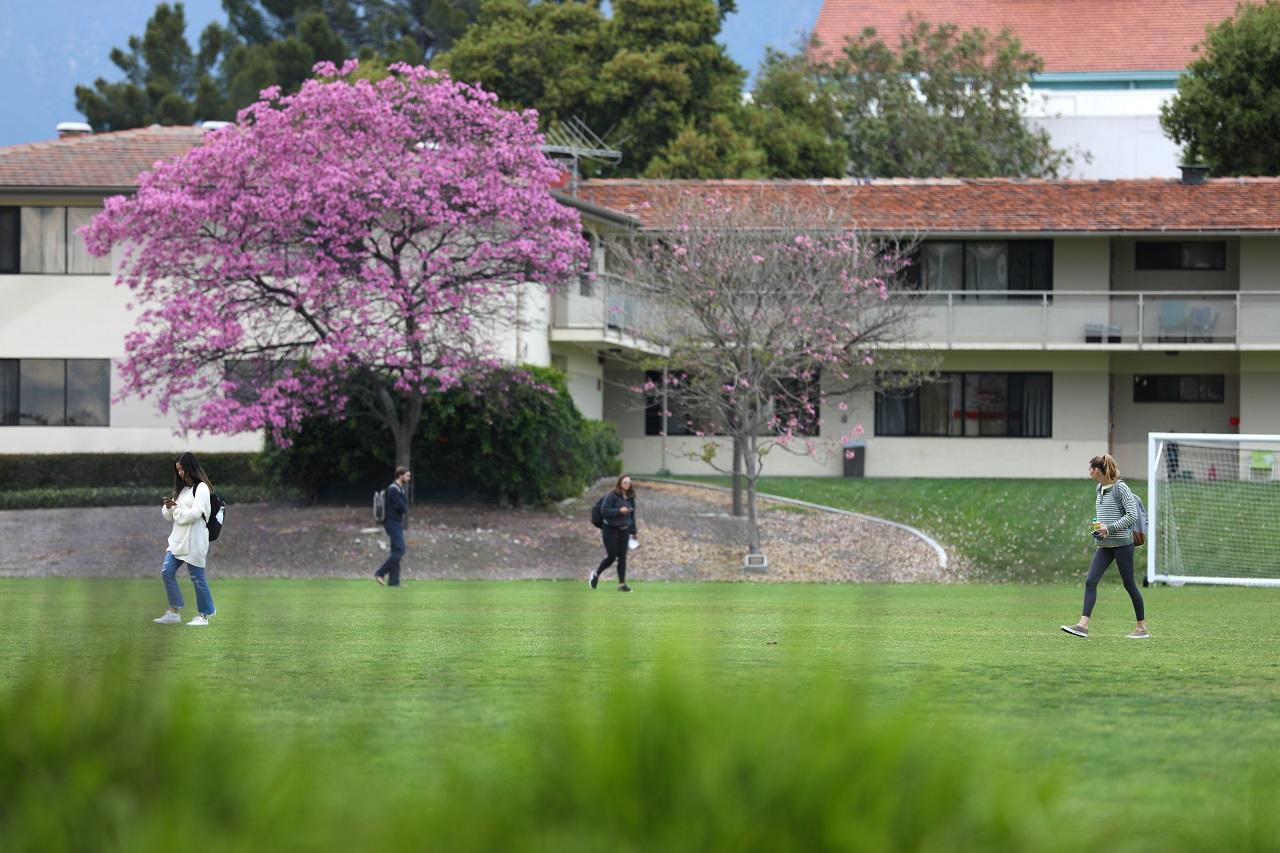 Zoom Campus
